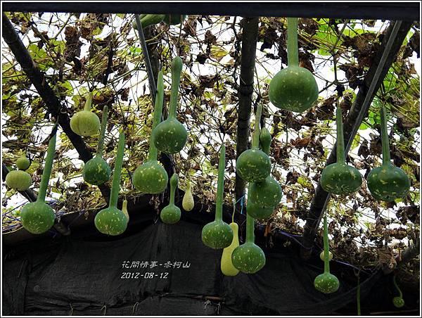 2012-08-赤柯山10