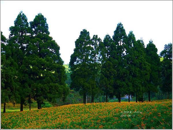 2012-08-赤柯山22