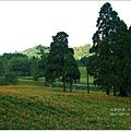 2012-08-赤柯山23