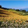 2012-08-赤柯山35