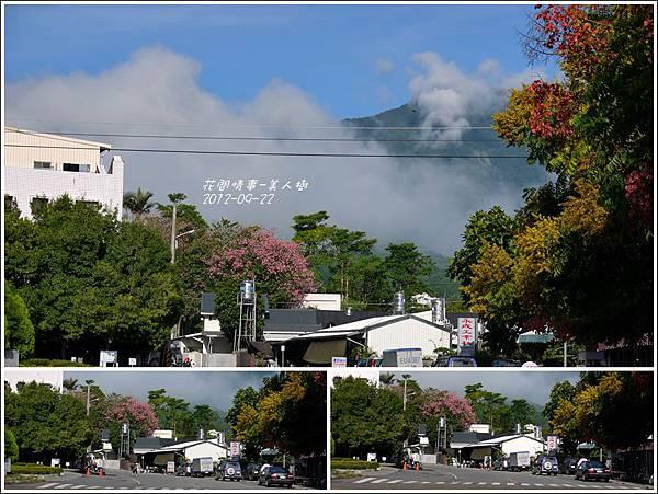 2012-09-美人樹8