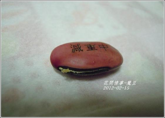 2012-03-魔豆1