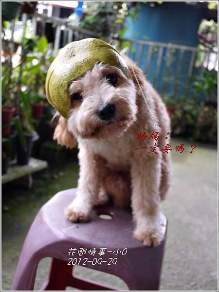 2012-09-小Q過中秋2