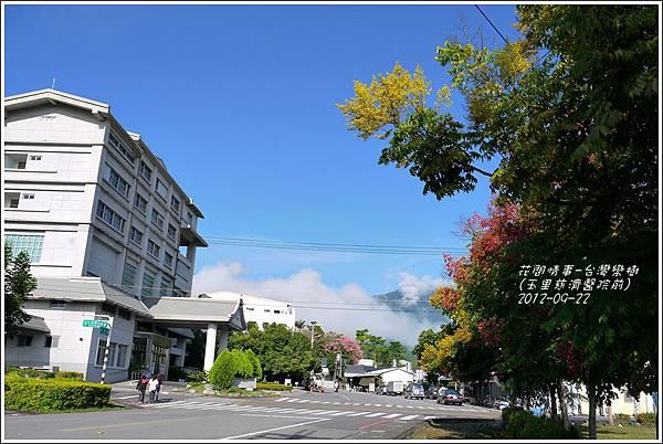 2012-09-台灣欒樹14