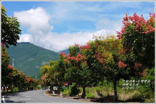 2012-09-台灣欒樹18