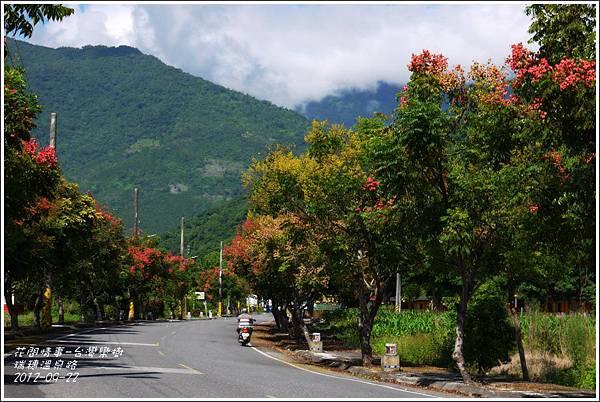 2012-09-台灣欒樹19