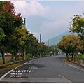 2012-09-台灣欒樹28