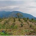 2012-10-山裡遊1