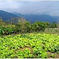2012-10-山裡遊4