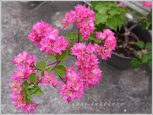 2012-10-香榭麗舍庭園民宿12