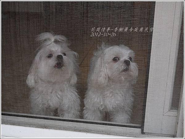 2012-10-香榭麗舍庭園民宿16