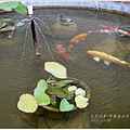 2012-10-香榭麗舍庭園民宿18