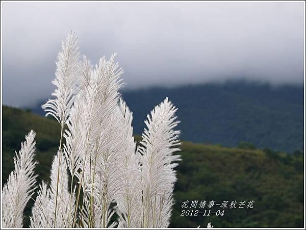 2012-11-深秋芒花4