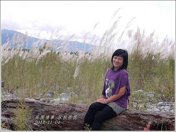 2012-11-深秋芒花10