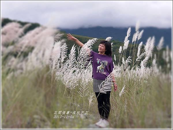 2012-11-深秋芒花11