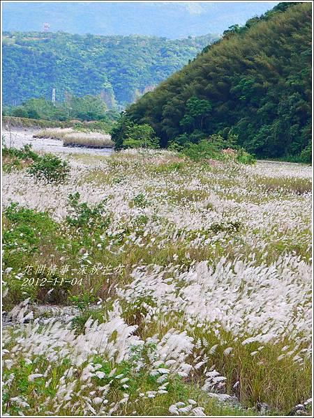 2012-11-深秋芒花24