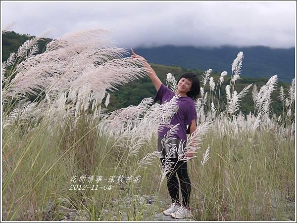 2012-11-深秋芒花30