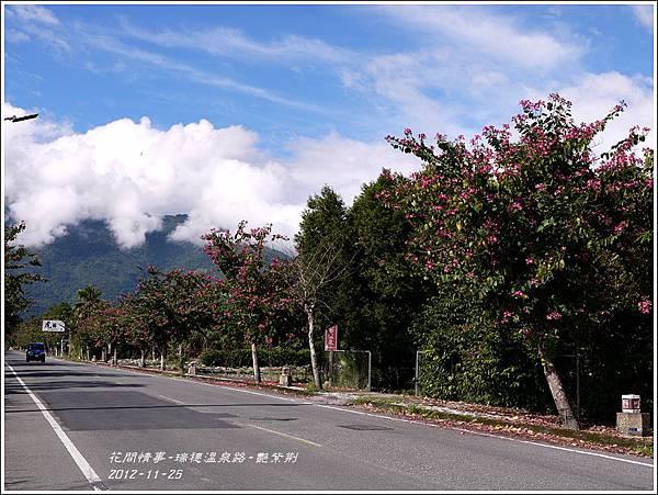 2012-11-艷紫荊6
