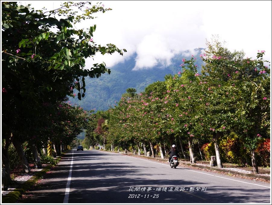 2012-11-艷紫荊12