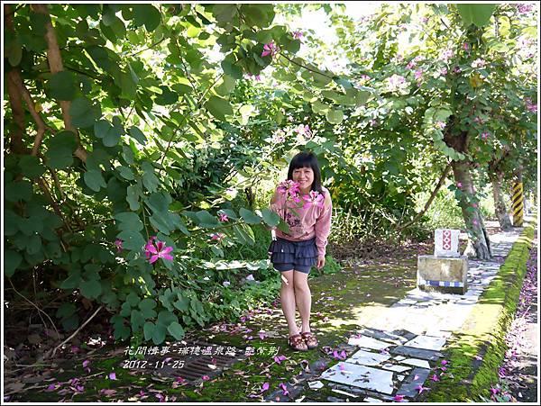2012-11-艷紫荊13