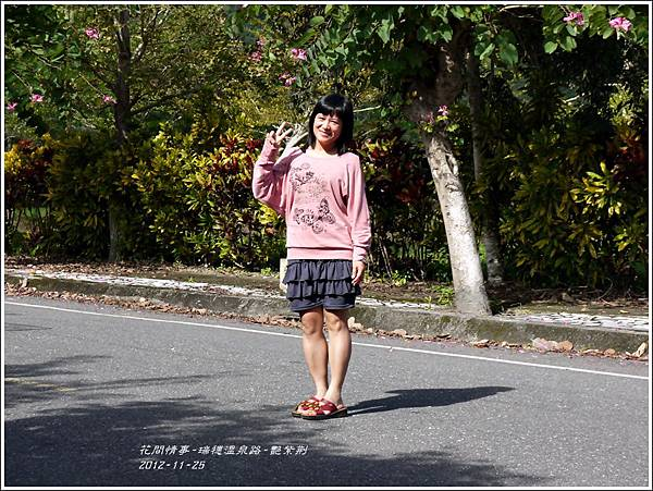 2012-11-艷紫荊16