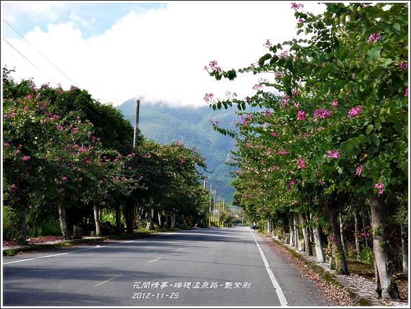 2012-11-艷紫荊17