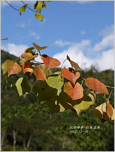 2012-12-紅葉溫泉4