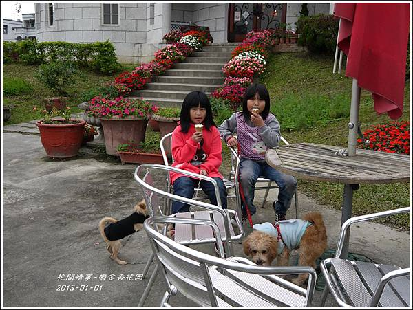 2013-01-鬱金香花園16