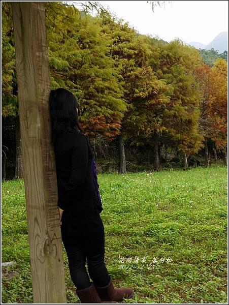 2012-12-落羽松之美13