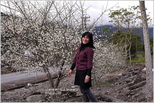 2013-01-梅花香9