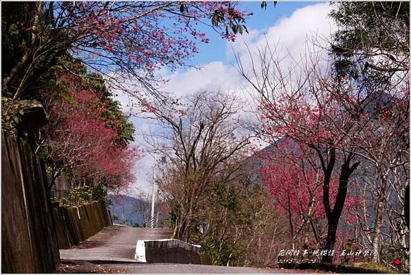 2013-01-現櫻情-玉山神學院6
