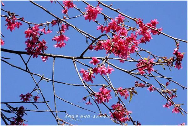 2013-01-現櫻情-玉山神學院7