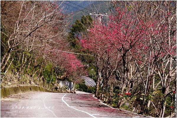 2013-01-現櫻情-玉山神學院10