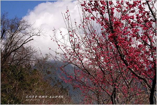 2013-01-現櫻情-玉山神學院27