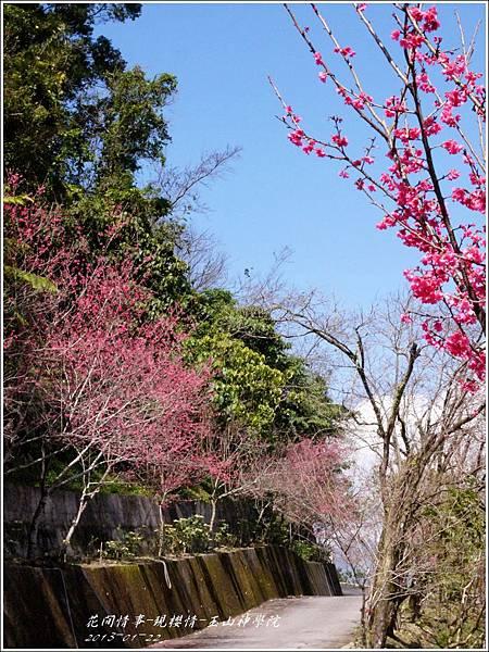 2013-01-現櫻情-玉山神學院28