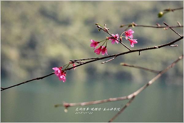2013-01-現櫻情-玉山神學院32