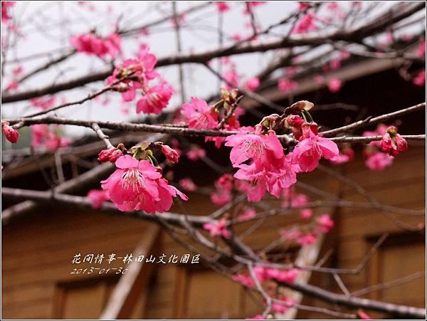 2013-01-林田山文化園區1