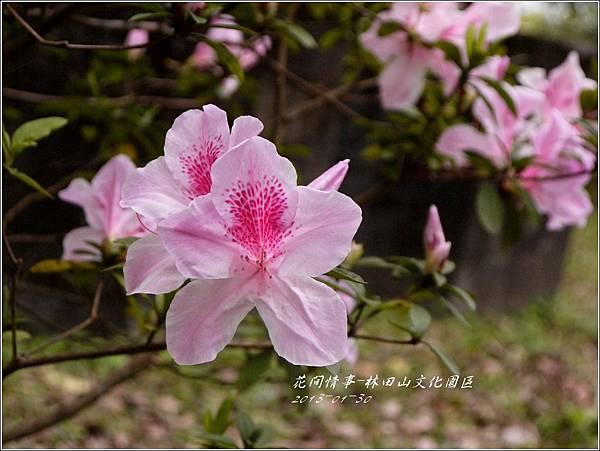 2013-01-林田山文化園區2