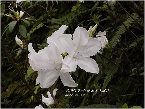 2013-01-林田山文化園區5