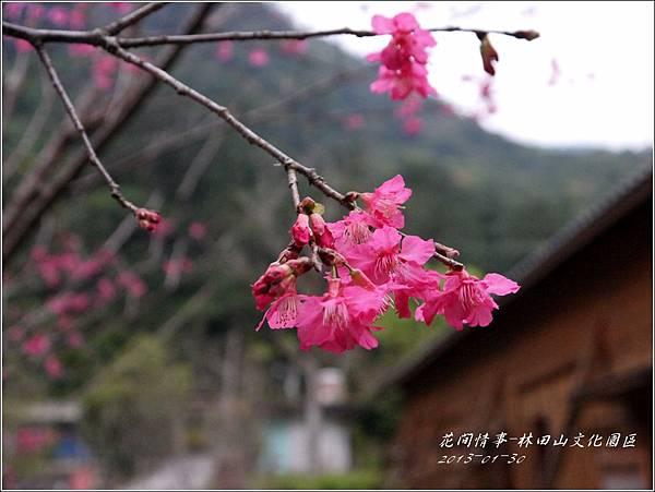 2013-01-林田山文化園區24