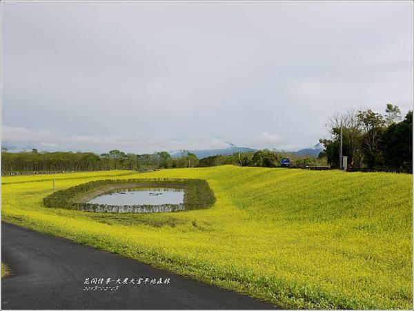 2013-02-大農大富平地森林8