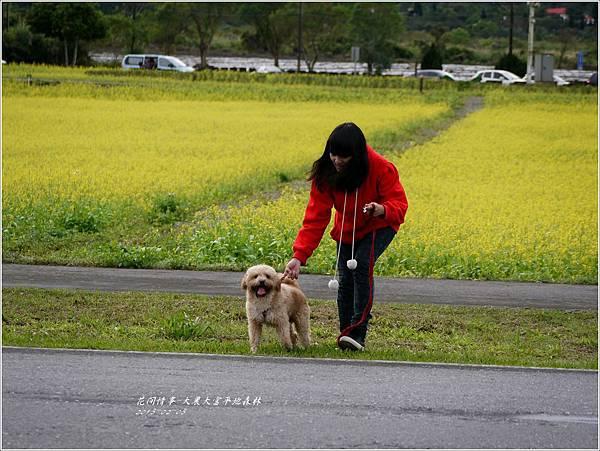 2013-02-大農大富平地森林24