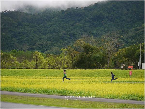 2013-02-大農大富平地森林31