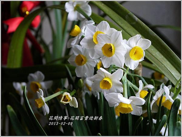 2013-02-迎新春2
