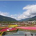 2013-02-池上花海9