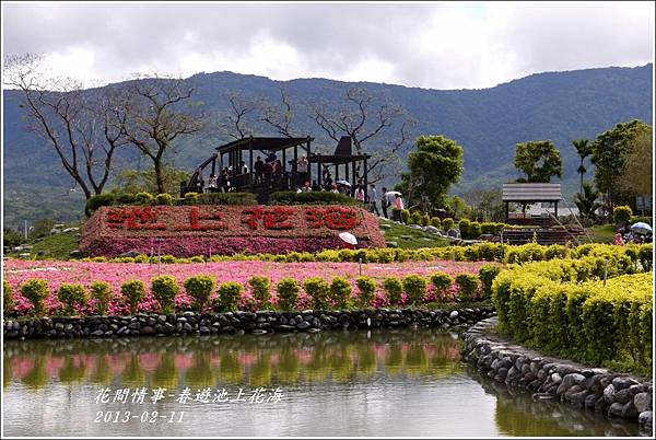 2013-02-池上花海37