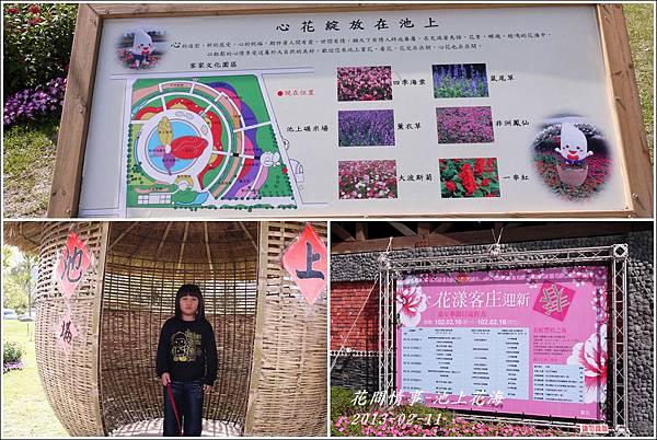 2013-02-池上花海1
