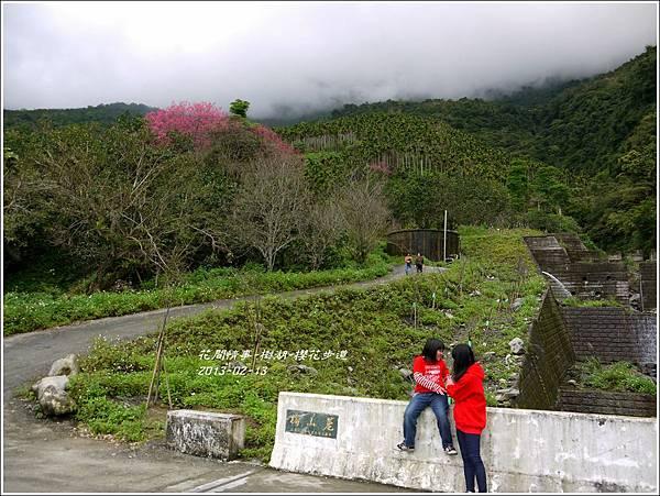 2013-02-樹湖-櫻花步道18
