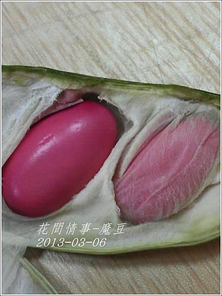 2013-03-魔豆6