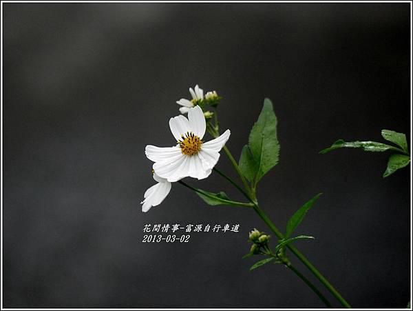 2012-03-富源自行車道8